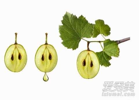 葡萄籽油可以做唇膏吗 葡萄籽油有什么功效