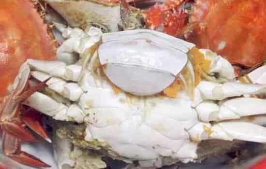 蒸螃蟹为什么肚子朝上 蒸螃蟹肚子朝上还是朝下