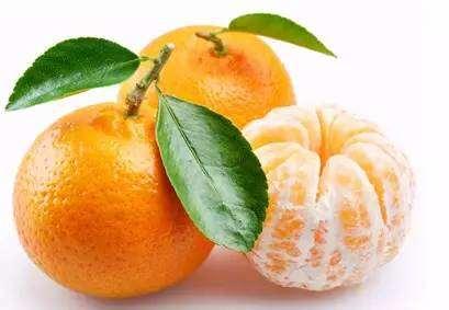 立秋吃什么水果