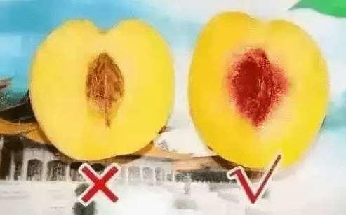 炎陵黄桃为什么这么贵