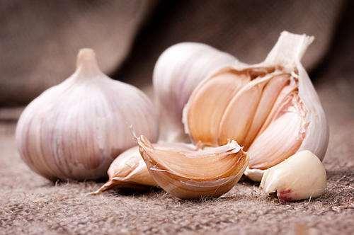 料理科学之你真的会用蒜和洋葱吗?
