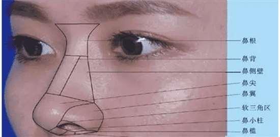 怎样可以缩小鼻翼 最实用的缩鼻翼干货一定要收藏