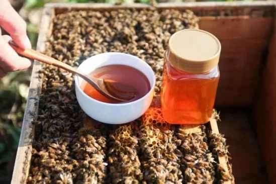 蜂蜜白醋减肥法的危害 说蜂蜜能减肥,也要讲究搭配