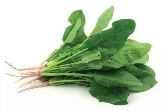 健身期间吃什么蔬菜好 健身最应该吃的九大蔬菜