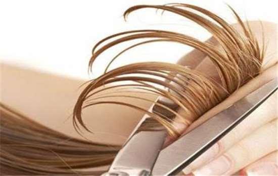 头发打薄从哪个位置开始打 打薄后的头发如何护理