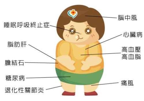 肥胖在医学上的定义,虚胖和真胖的特征区别
