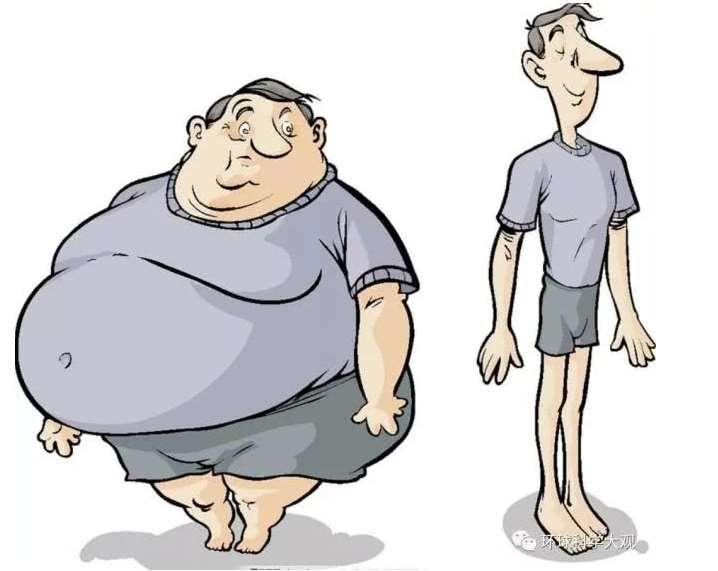 肥胖对身体的十大危害,胖人智商高还是瘦人智商高