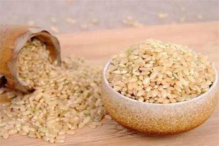 五谷杂粮有哪些功效与作用,这五种杂粮粗细搭配免健康受损