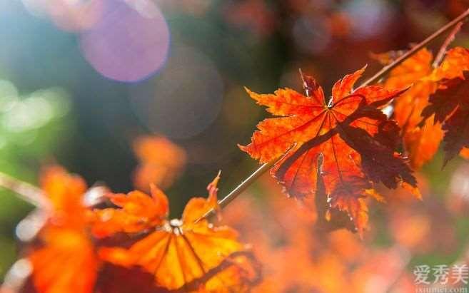 秋天仍在为肤燥疑虑 ? 这三大 护肤常识很重要
