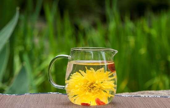 女性秋季疏肝养肝,除了这些方法也要了解水飞蓟的功效与作用