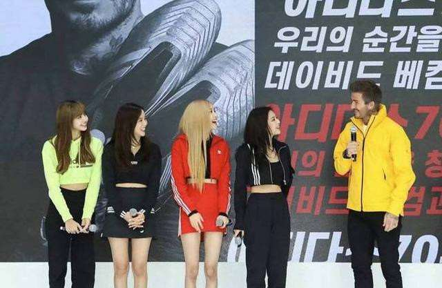 著名韩女团BP不戴手套摸熊猫!遭网友怒骂太危险,官方正式回应_明星新闻