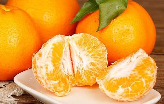 """春见耙耙柑和丑橘有什么区别 教你鉴别柑橘界的""""双胞胎"""""""
