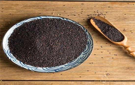 黑藜麦有什么营养价值