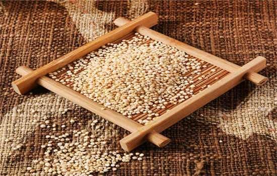 白藜麦哪些人不适合吃