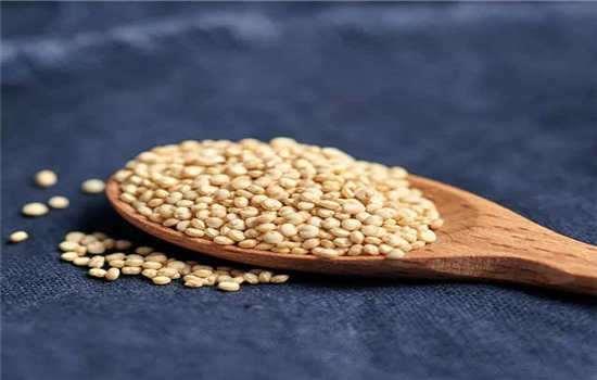 藜麦有什么功效