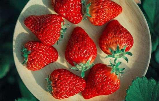 草莓洗了容易坏还是不洗容易坏 保存草莓前需要清洗吗