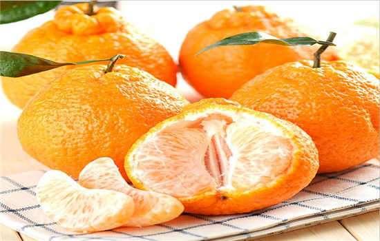 丑橘和耙耙柑怎么分辨