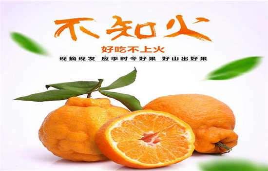 丑橘是热性水果吗