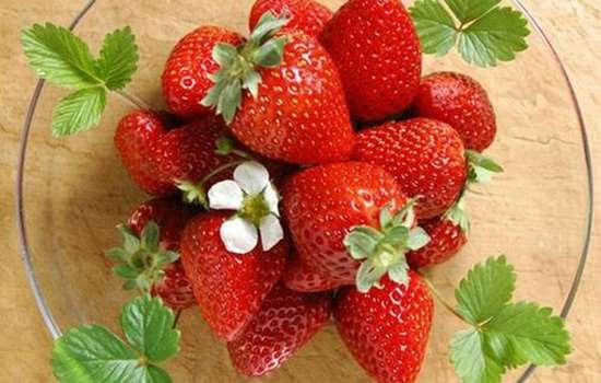 现摘的草莓有农药吗 摘草莓怎么鉴别有没有农药