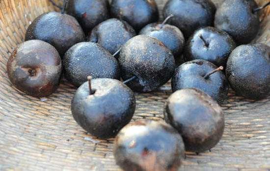 冻梨和普通梨的区别 冻梨为啥更好吃