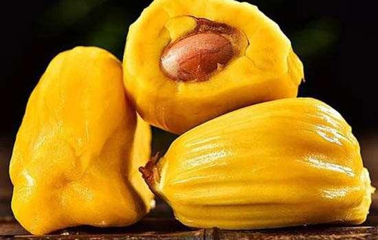 菠萝蜜熟透和烂的区别 菠萝蜜熟透了还能吃吗
