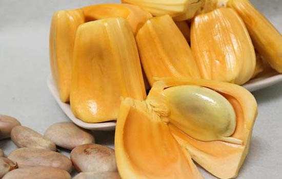 菠萝蜜青色的可以吃吗 怎么判断菠萝蜜是否成熟