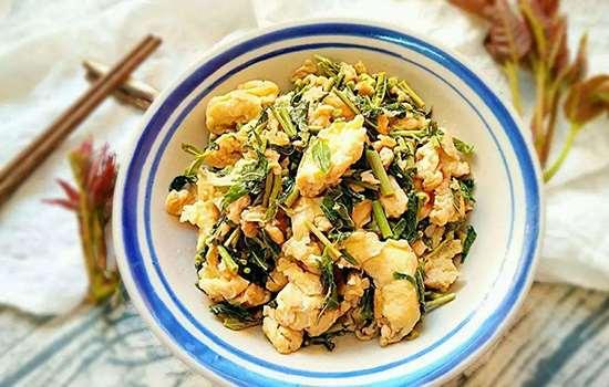 香椿怎么做好吃 香椿的各种吃法与做法