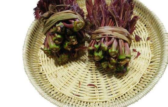 买的香椿为什么不香 如何辨别香椿菜