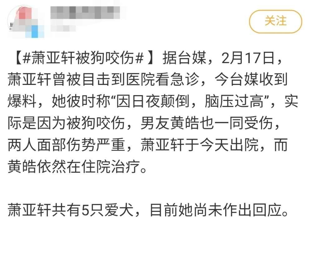 41岁萧亚轩脸部被狗咬伤,小16岁男友伤势更重,正在住院治疗_明星新闻