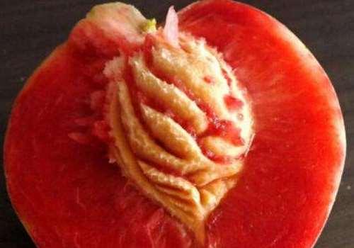 血桃是脆的还是软的 血桃是油桃还是毛桃