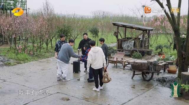 杨紫加盟《向往》不避嫌,与张艺兴同种一棵树,穿同款睡裤超有缘_明星新闻