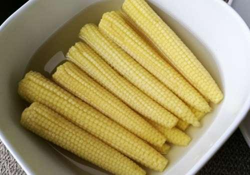 玉米笋什么季节有 玉米笋哪里有卖