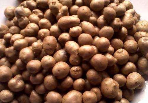 山药豆可以带皮吃吗 山药豆怎么保存好