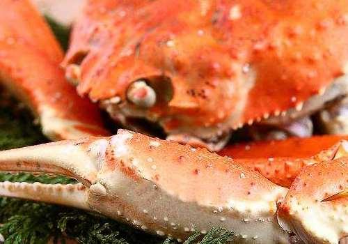 冬蟹又叫什么蟹 冬蟹不适合哪些人吃