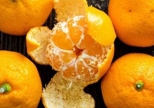冻橘子能吃吗 冻橘子为什么会变苦