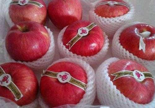 世界一号苹果最大有多大 世界一号苹果为什么这么贵