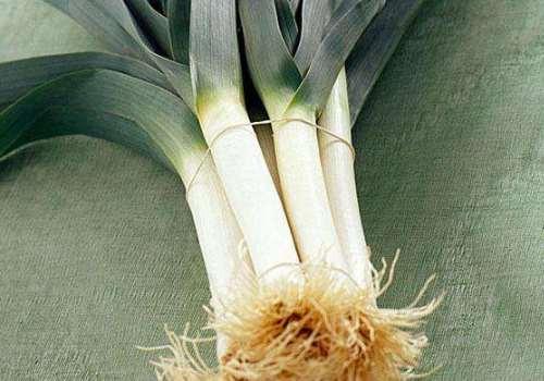 韭葱为什么有肉香 韭葱和蒜苗有什么区别