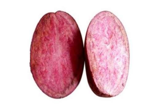 红皮土豆里面什么颜色 红皮土豆里面是红色紫色还是黄色