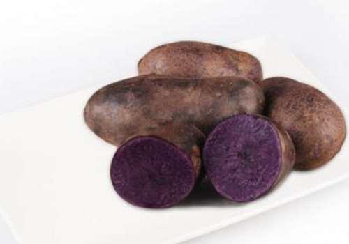 紫土豆和紫薯的区别 紫土豆和紫薯哪个营养更好
