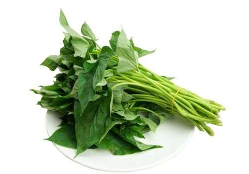 红薯叶的功效与作用 红薯叶吃了有什么好处和坏处