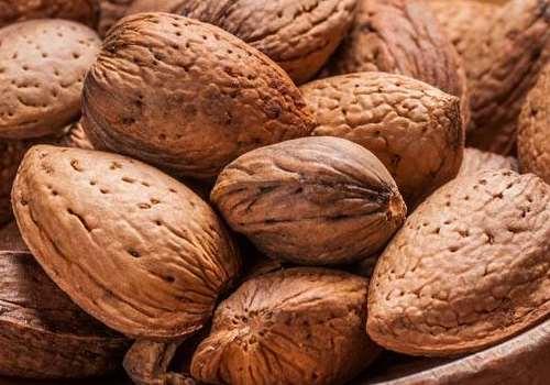 巴旦木吃多了会中毒吗 巴旦木是杏仁还是桃仁