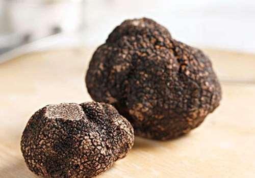 黑松露好吃吗什么味道 黑松露什么季节有