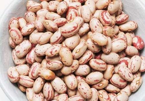 花豆的种植方法 花豆什么时候种植最好