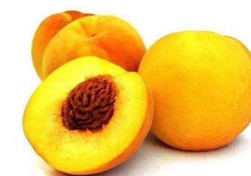 锦绣黄桃为什么这么贵 锦绣黄桃是哪里产的