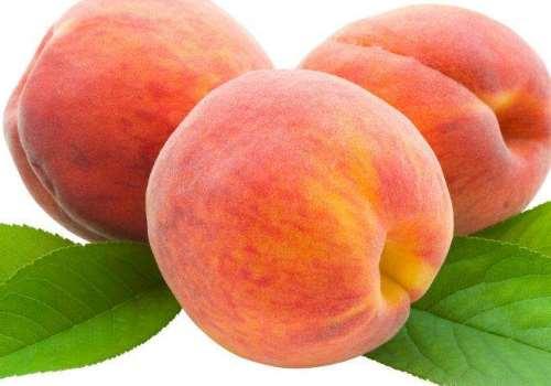中国哪里的桃子最好吃 哪里的桃子最有名