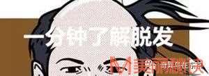 """""""雄脱""""最后的救星!植发不能拯救的脱发,它可以!丨日本整容整形"""