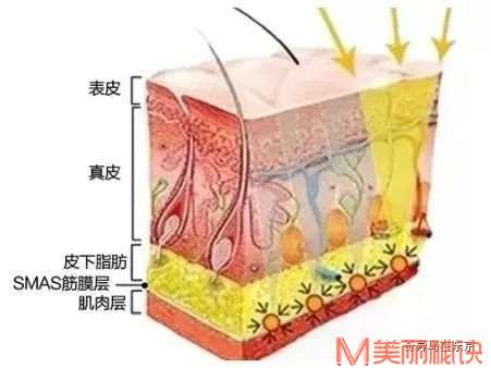 一次手术可以逆生长10年以上!这是什么神仙操作!丨日本整容整形