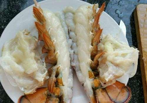 波士顿龙虾怎么挑选 波士顿龙虾有多大